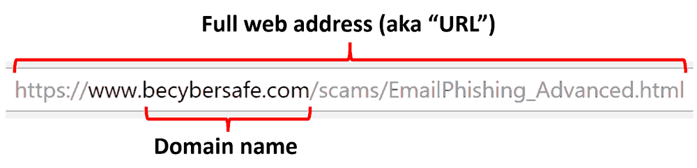 Identifying the domain name from a web address